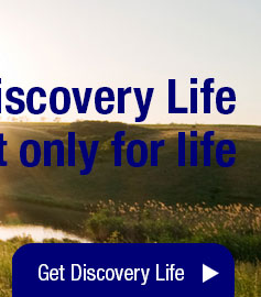 Get Discovery Life Insurance